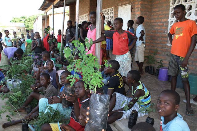 Determined to Develop School Children Assist with Reforestation Project 2