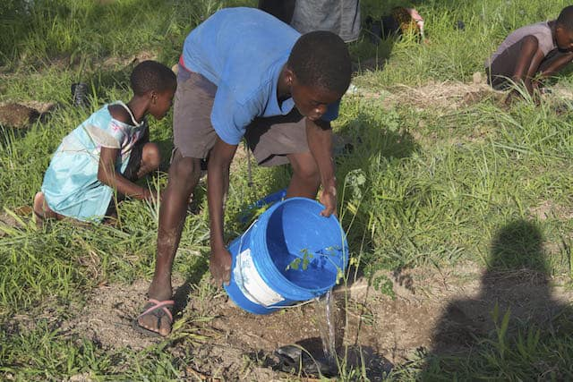 Determined to Develop School Children Assist with Reforestation Project 5